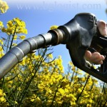 Европейский союз ограничил развитие биотоплива