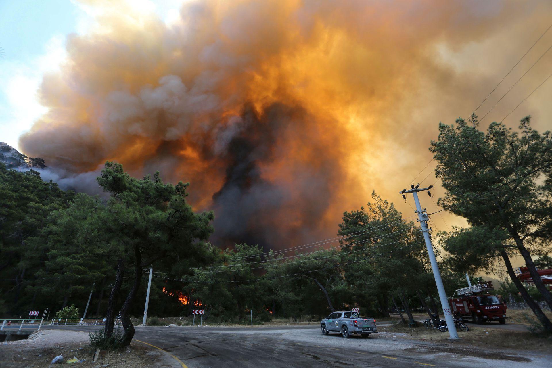В Турции бушуют лесные пожары, хотя большинство из них удалось локализовать