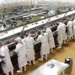 Экспорт продуктов питания из Болгарии вырос на 3 миллиарда