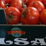РФ будет снимать запрет на поставку сельхозпродукции из Турции поэтапно